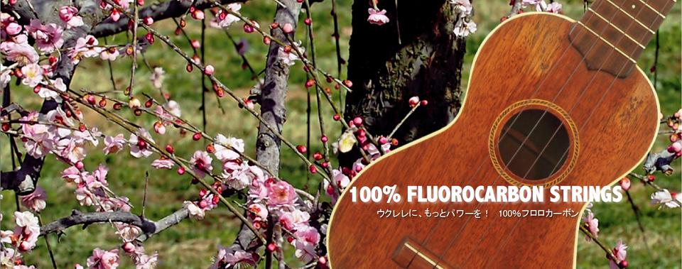 100% FLUOROCARBON STRINGS ウクレレに、もっとパワーを! 100%フロロカーボン。