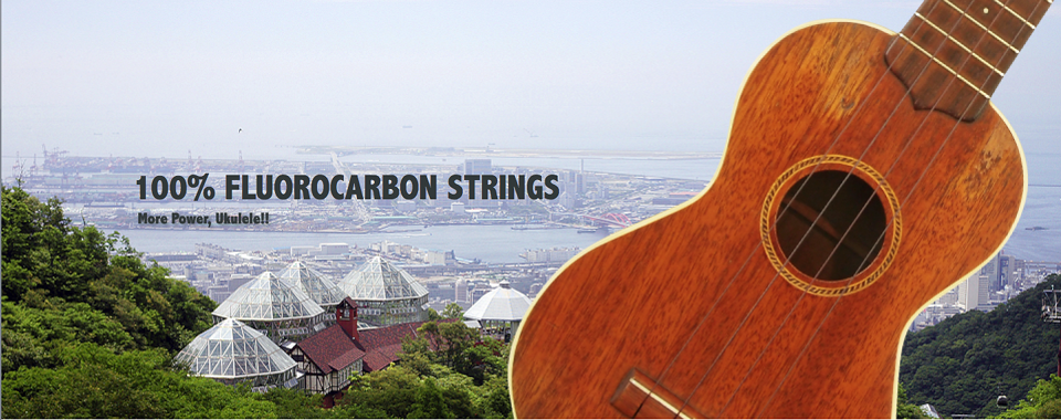 100% FLUOROCARBON STRINGS