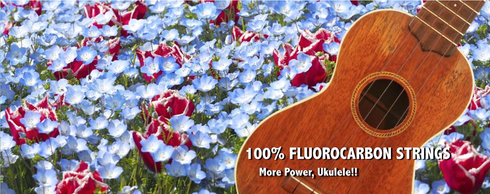 100% FLUOROCARBON STRINGS