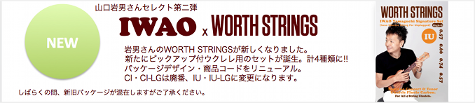 IWAO x WORTH STRINGS2