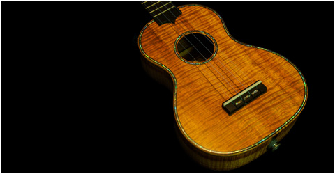 Gibson Style 2