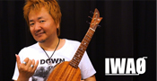 IWAO OFFICIAL WEB